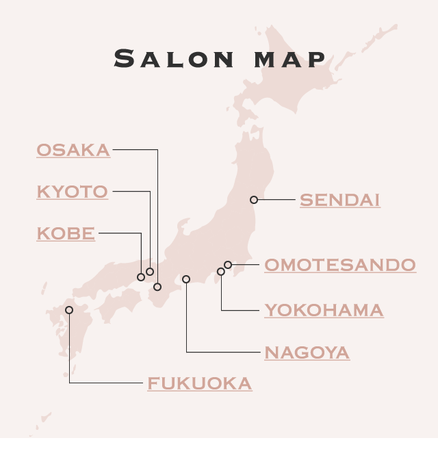 salon map