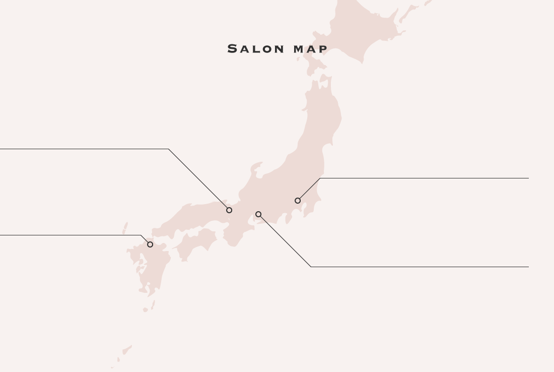 salon map